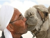 have a kiss with a camel